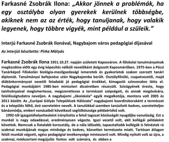 fzsi-1