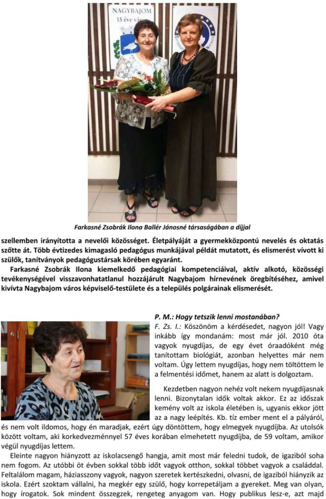 fzsi-2