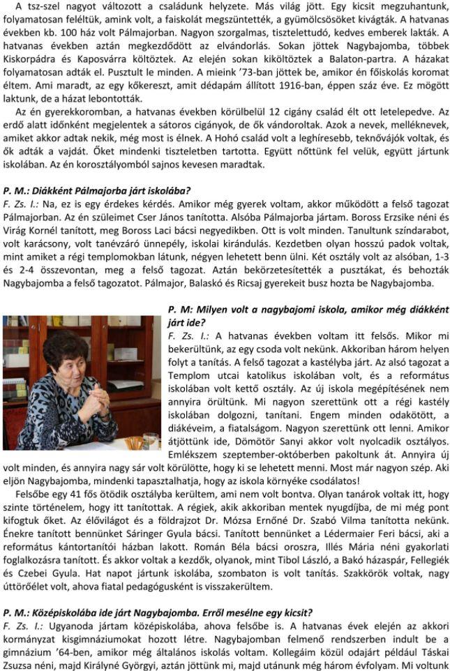 fzsi-4