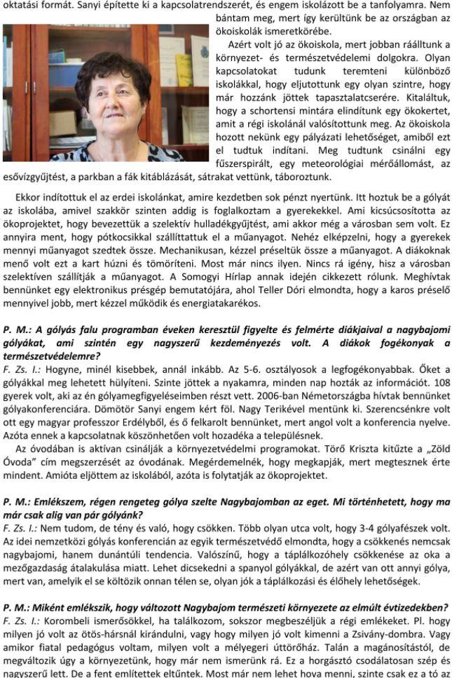 fzsi-9